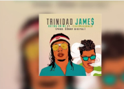 Trinidad James - H.O.M.E ( Hating On Me)
